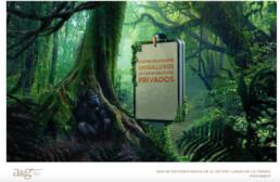 Alberto García Escudero. Photographer. Hawai Films Production Company Spain (Madrid) - Production services